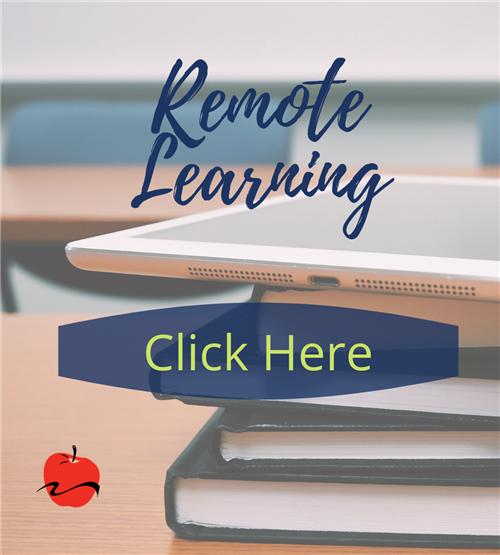remote learning plans
