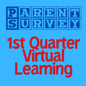 Parent Survey: About Virtual Learning